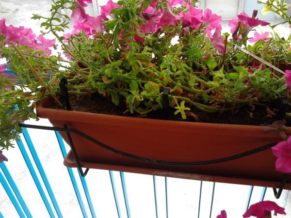 sistema irrigazione balcone