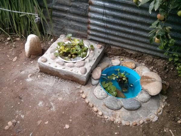 Vasche per pesci rossi da giardino laghetto artificiale for Vasche pesci da giardino